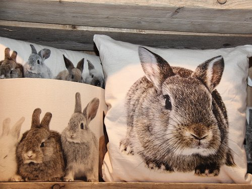 kissen kaninchen braun von mars more bei erkmann. Black Bedroom Furniture Sets. Home Design Ideas