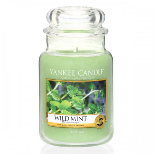 Yankee candle duftkerze housewarmer wild mint 623g eur 25 62 - Yankee candle calendrier de l avent ...