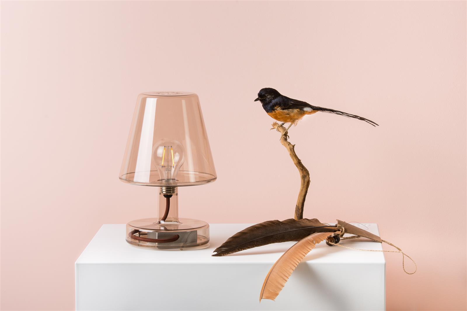 lampe transloetje violett von fatboy. Black Bedroom Furniture Sets. Home Design Ideas