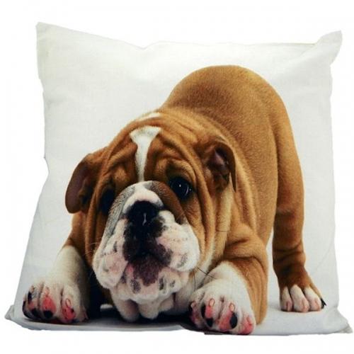 kissen bulldogge von mars more bei erkmann. Black Bedroom Furniture Sets. Home Design Ideas